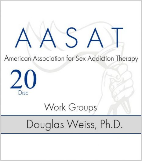 AASAT Sex Addiction Training Disc 20 Work Groups
